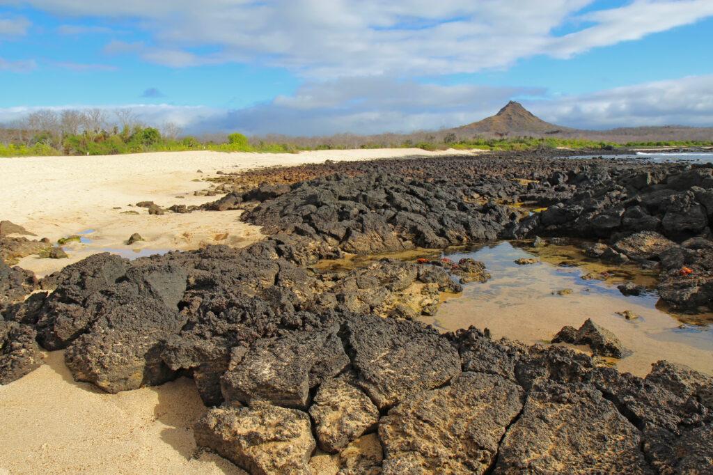 Santa Cruz Island | Galapagos Island | Ingenious Travel