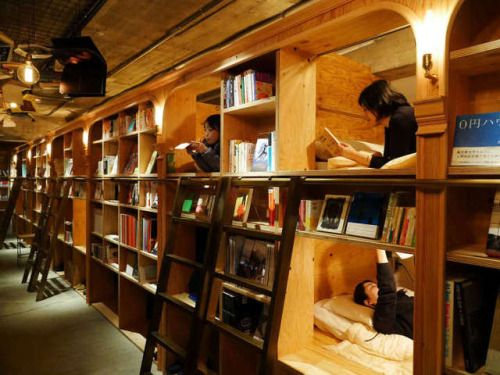 Book and Bed Bookstore | Ingenious Travel